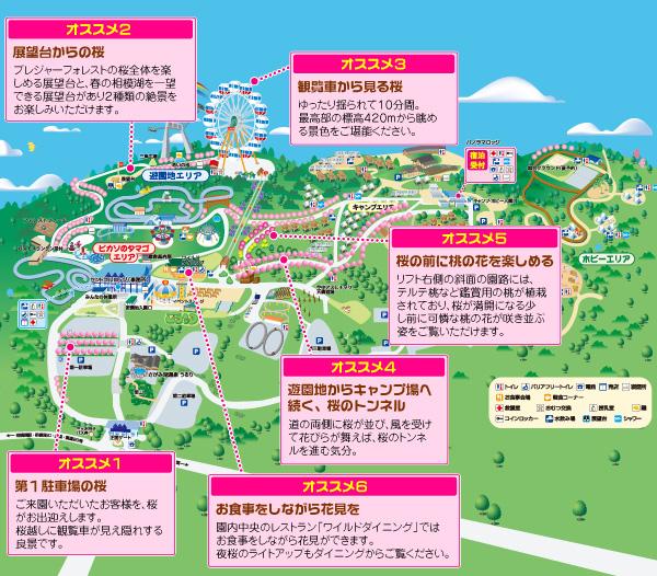 sakura_map_p2f