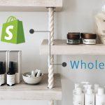 [Tech]卸売り設定が簡単にできる!Shopifyアプリ「LION Wholesale」